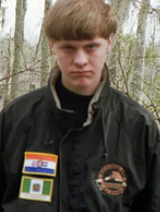 dylannroof